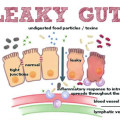 petanda-leaky-gut